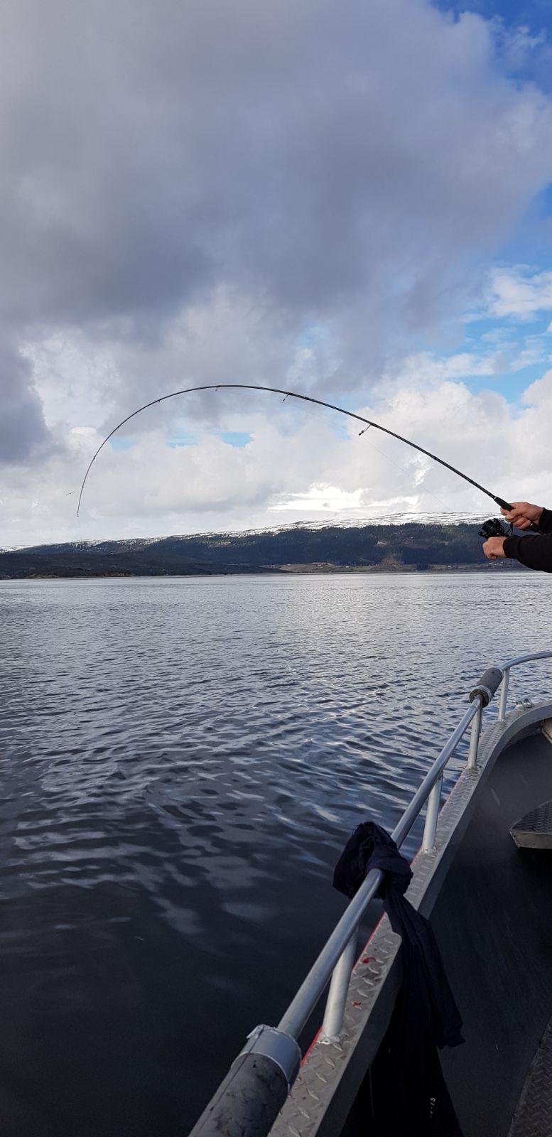4kg koolvis vanop 90 meter diepte takelen